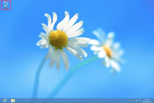 windows8-desktop-icon-01