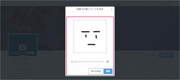 twitter-customizing-your-profile-11