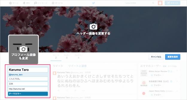twitter-customizing-your-profile-12