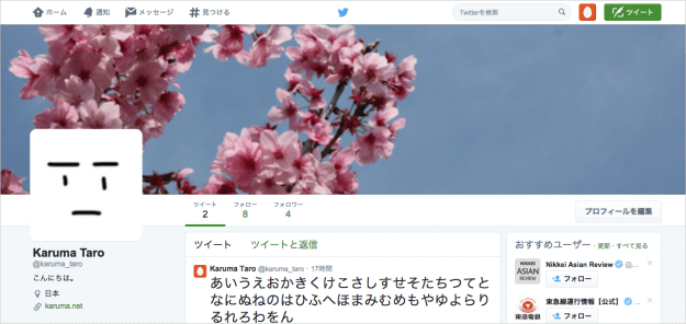 twitter-customizing-your-profile-14